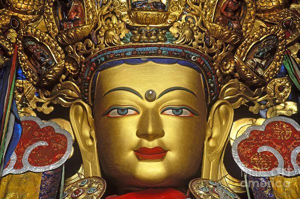 Buda Maitreya | A Perfeição da Paciência